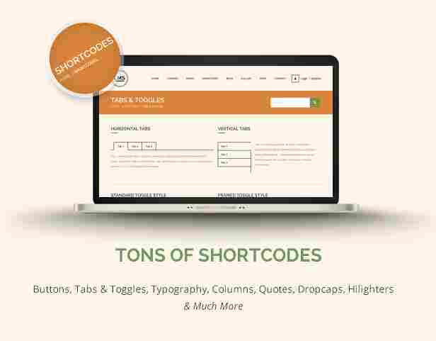 14-lms-shortcodes